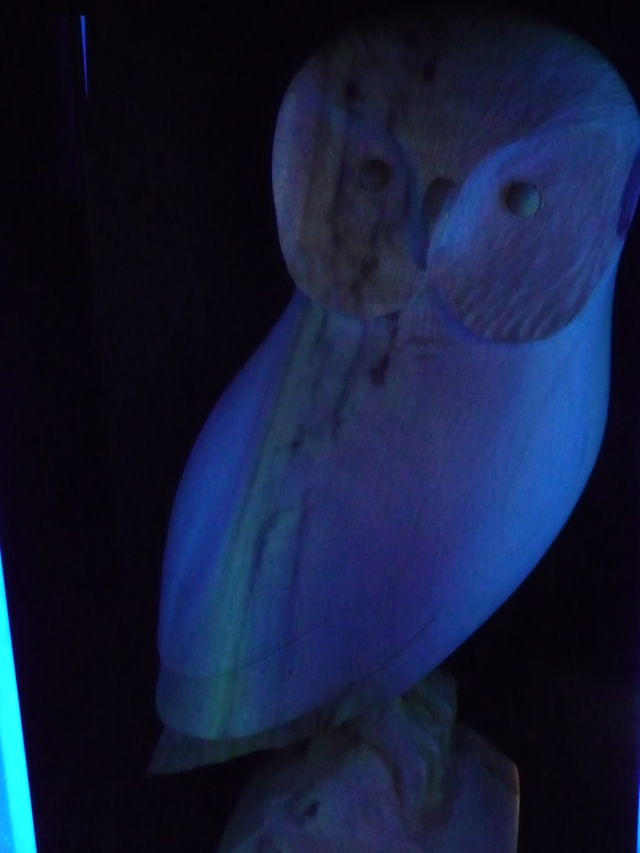 Myrtlewood owl by Terry Woodall glows in ultra violet light.  Myrtlewood is one of the few rare woods of the world that have luminescent properties.